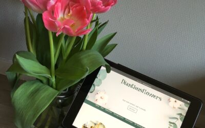 Dianthusflowers is LIVE